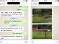 whatsapp-screenshot-01